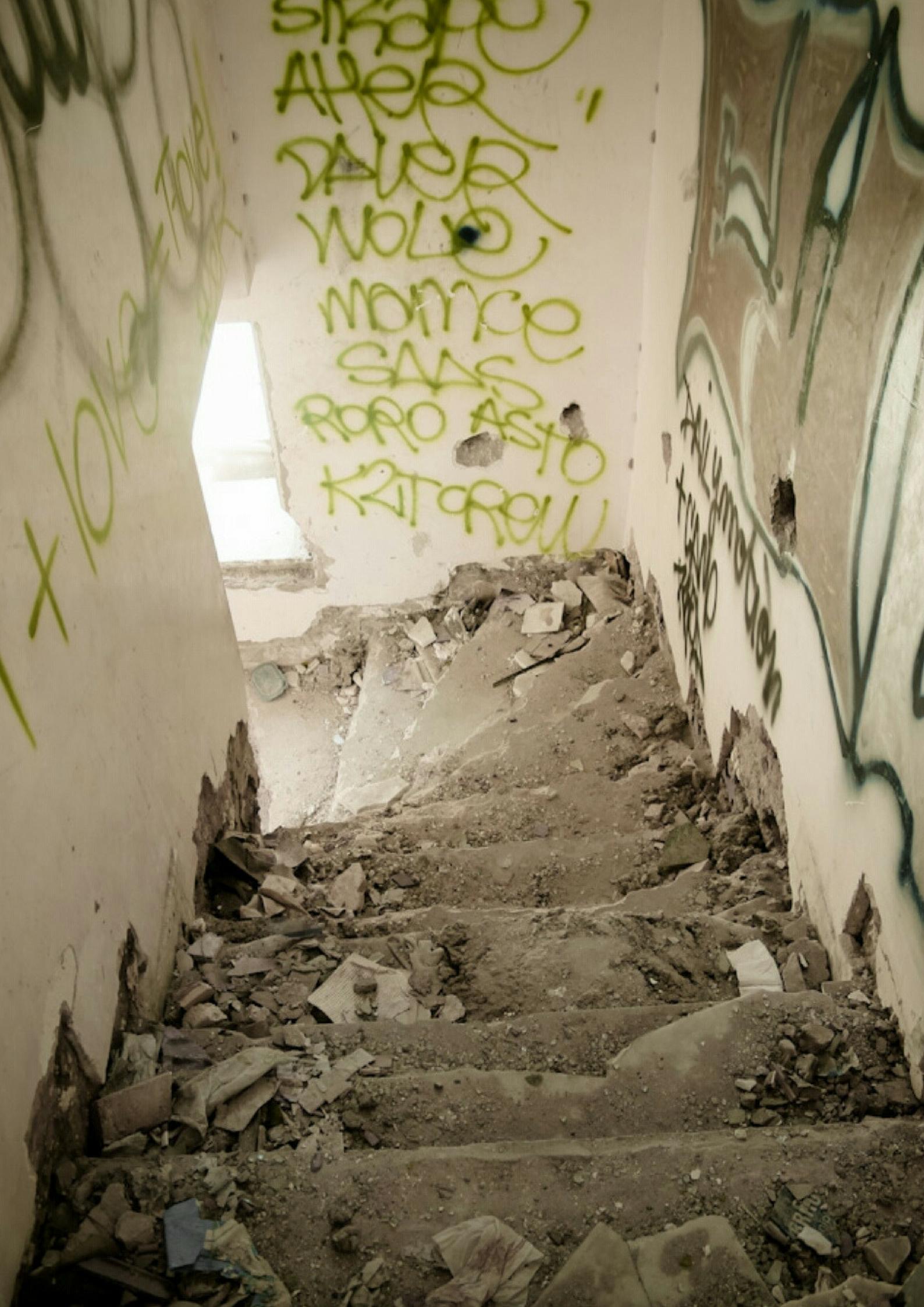graffiti, street art, ben ali, trabelsi, tunisia, jasmin revolution, arab spring